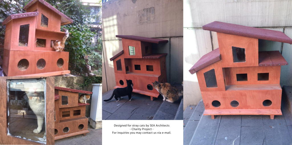 project cat house